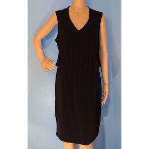 Black Banana Republic Dropwaist Dress